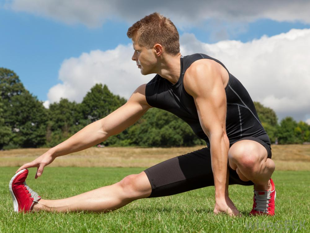Endurance runners - the stretching controversy - Aligned ...
